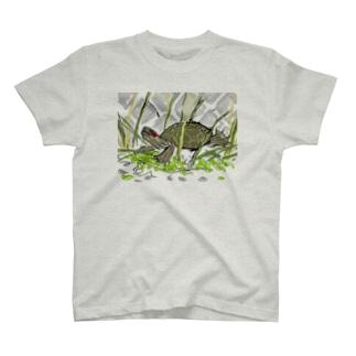 のびのびミシシッピアカミミガメちゃん T-shirts