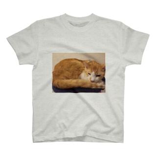 永ちゃん代表 T-shirts