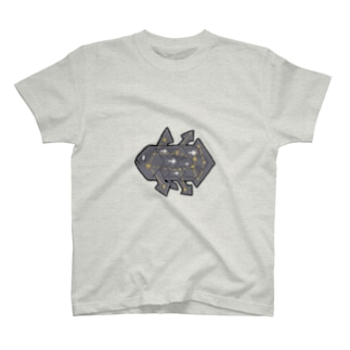 sinkai_seiza_1 T-shirts