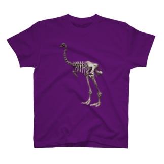 ディノルニス・エレファントプス(モア) - Getty Search Gateway T-shirts