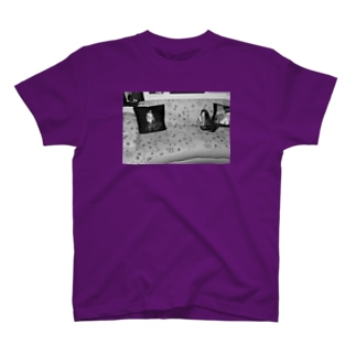 フォトグラフィック T-shirts