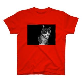 HolsteinCat-BK T-shirts