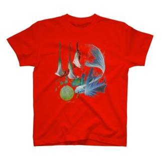 点2 T-shirts