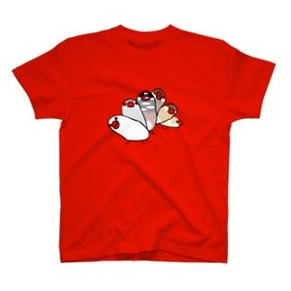 ブンザイル_2015 T-shirts