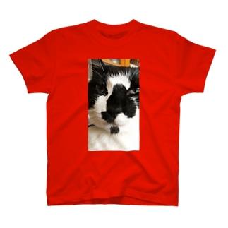 チョビヒゲオヤジネコ2 T-shirts