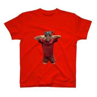もうりのもうり 車2 T-shirts