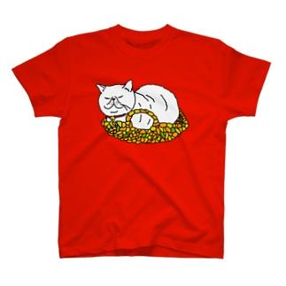 未知なかご猫との遭遇 T-shirts