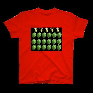 uco の熊童子 T-shirts