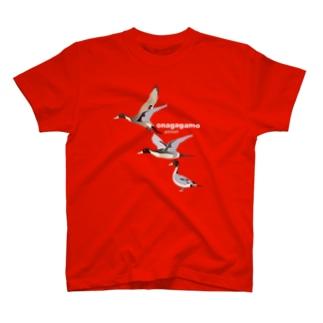 オナガガモ さん、かっこいいです T-shirts