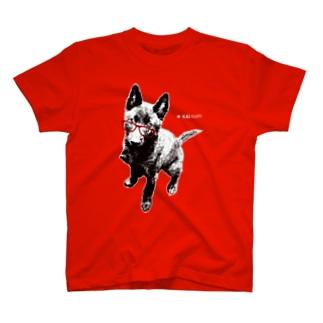 甲斐犬Tシャツ(赤色用) T-shirts