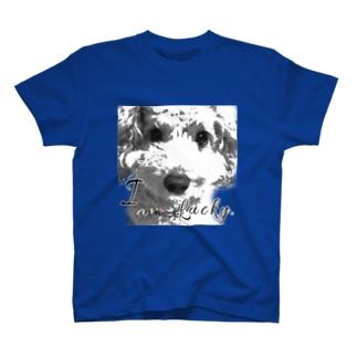I am Lucky 2. T-shirts
