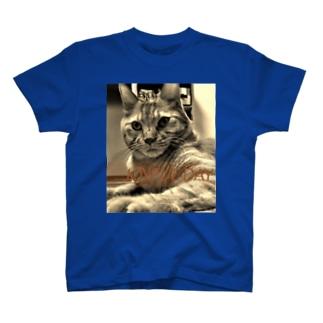 JOYFUL DAY 1003 T-shirts