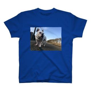 俺、空さん。 T-shirts