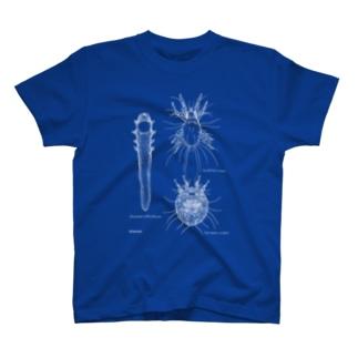 ダニ3種 T-shirts