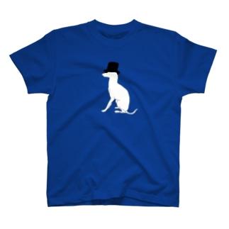 帽グレ背景透過 T-shirts