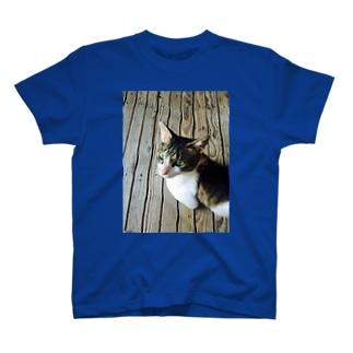 愛    Love    きゃっと❤️ T-shirts