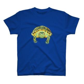 ミシシッピアカミミガメ T-shirts