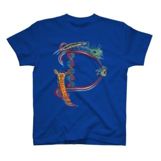 """""""D""""  Wonderalphabet T-shirts"""