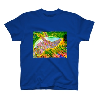 STARDUST  WHALE T-shirts