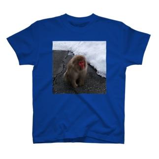 おさるちゃん T-shirts