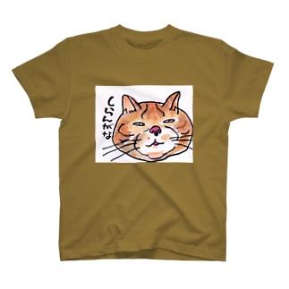 しらんがな  ぶさネコのつぶやき T-shirts