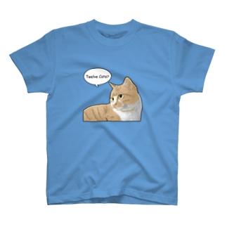 Twelve CatsのCOMIC! 6 T-shirts