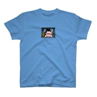 窓辺のGREEY T-shirts