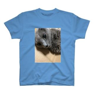 あざといコフィーTシャツ T-shirts
