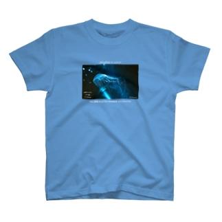 meisekimu2ver2 前面 T-shirts