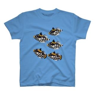モンガラカワハギ T-shirts