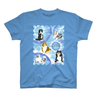 Five colors of Shetland Sheepdogs.~Turquoise~ T-shirts