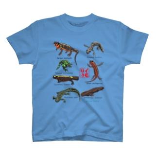イモリがいっぱイモリ! T-shirts