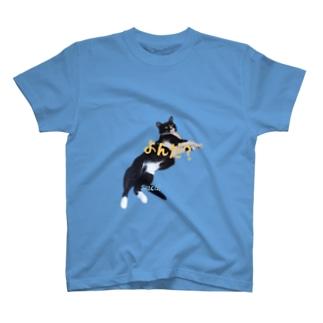 ダルスカ T-shirts