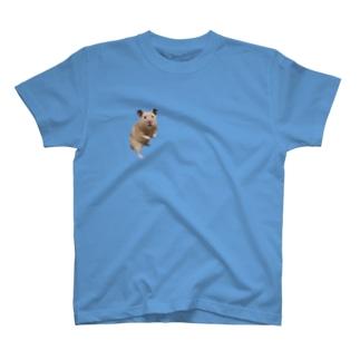 hanaのキンクマてぃーだ君 T-shirts