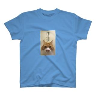 技術的な問題が発生しています。 T-shirts