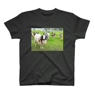 ひつじのジェイコブ T-shirts