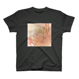 scents of eachの植物標本 T-shirts