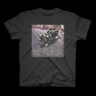 ぬっのおもちゃの恐竜🦖 T-shirts