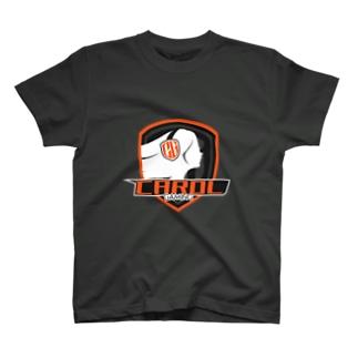 stylishlogo T-shirts