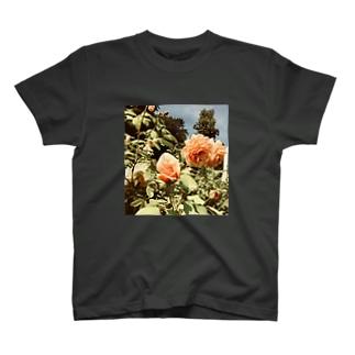 イングリッシュローズガーデン T-shirts