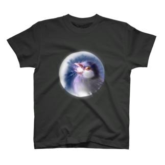 ぶちょらビームチャージ T-shirts