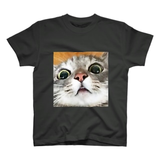 とらちゃぼんツブツブ前歯 T-shirts