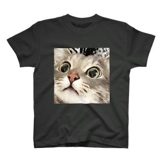 とらちゃぼんビックリ眉毛 T-shirts