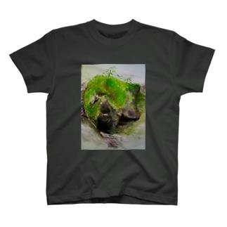 苔むした岩 T-shirts