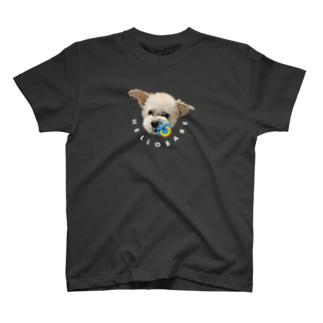 HELLO BABE T-shirts
