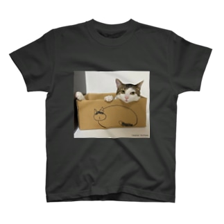 そよの箱に入るこち T-shirts