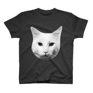 ビッグフェイスメインクーン T-shirts