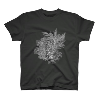 PygmyCat(白線ver) T-shirts