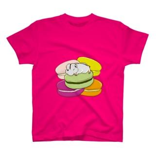 マカロンとステップレミング(透過) Tシャツ