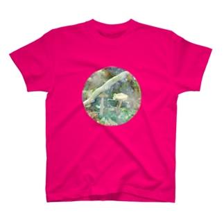 きのこシャボン2 T-shirts